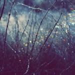 Zimski solsticij - početak vladavine Jarca